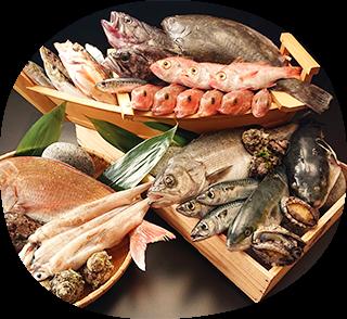 旬の天然魚
