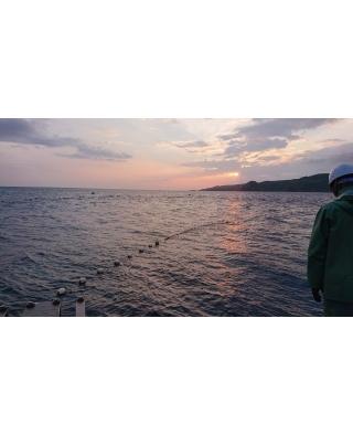 漁 2020/5/25